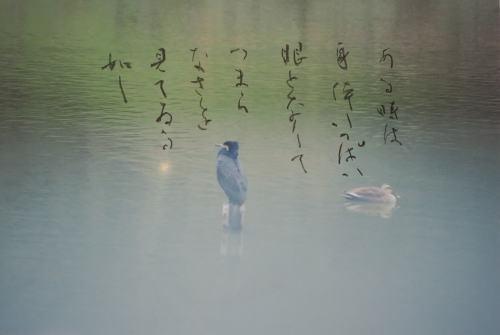 IMG_8126ー牧水.jpg
