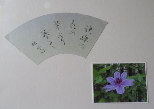 IMG_8156-500.jpg