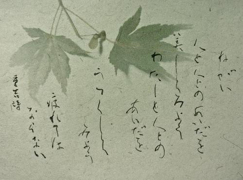 P1230581-1.jpg